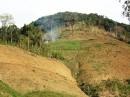 Kinh nghiệm quản lý đất bỏ hóa sau nương rẫy ở Việt Nam - TS. Trần Đức Viên