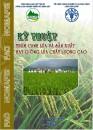 Quy trình thâm canh lúa và sản xuất hạt giống chất lượng cao