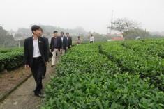 Đoàn công tác Viện Khoa học nông nghiệp Việt Nam thăm và làm việc tại Viện KHKT nông lâm nghiệp miền núi phía Bắc